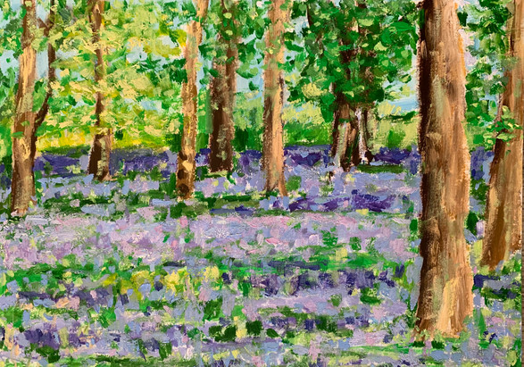Bluebell forest II