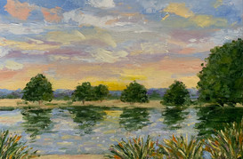 Richmond Park sunrise