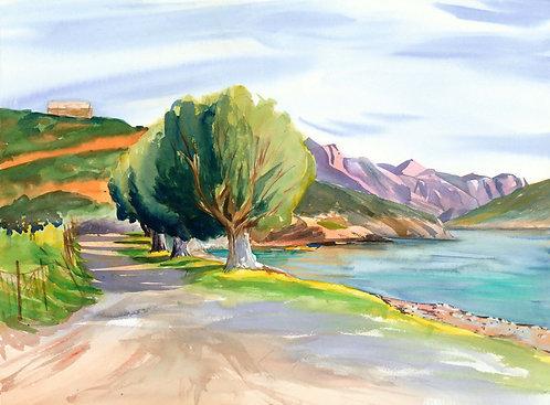 Original Painting | Greece | Kalymnos | Beach Trees