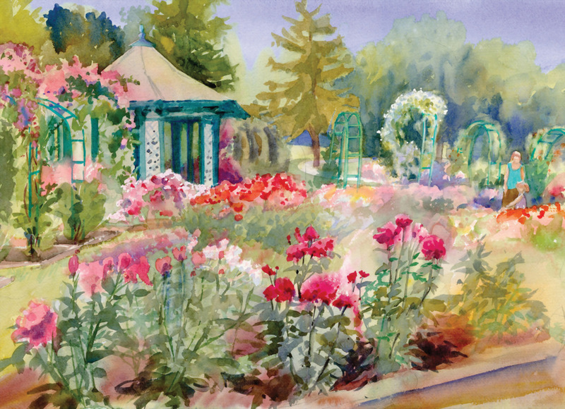 Rose Garden Cards Midday in July