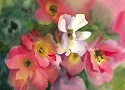 Rose Garden Cards Rainbow Knockout Study