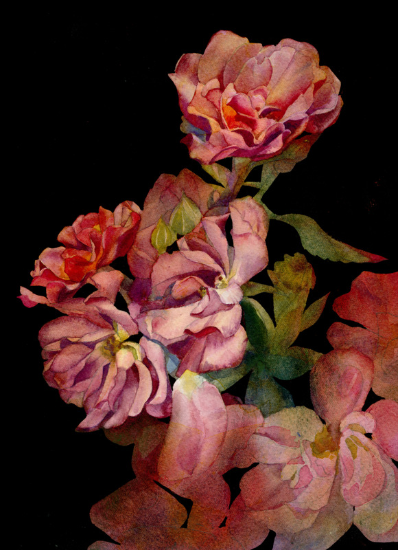 Blossoms Cards Cinco de Mayo Study