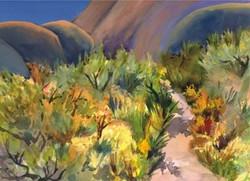 Idaho Cards Desert Grasses