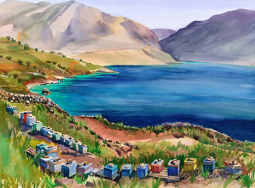 Original Painting | Greece | Kalymnos | Beehives