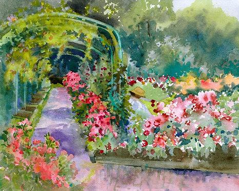 Prints | Rose Garden | Volunteer Day