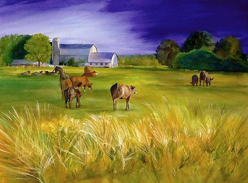 Prints | Floyd Farm
