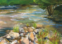 Adirondack Water Cards Boquet River