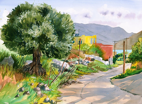 Original Painting | Greece | Kalymnos | Emborios Street with Big Olive Tree