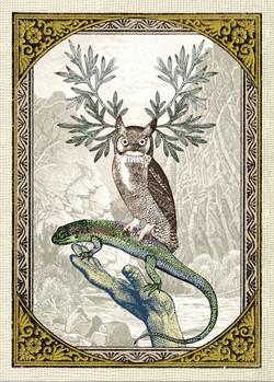 Bagatelles Cards Wisdom