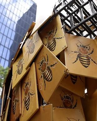 the Good of the Hive matt Willey.jpg