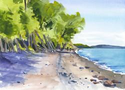 CNY Water Lake Ontario Sterline Beach