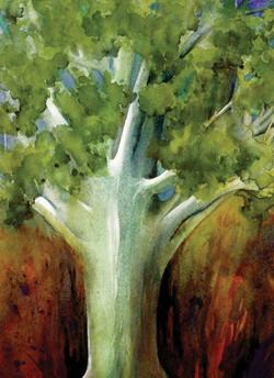 Watercolors Cards Tree