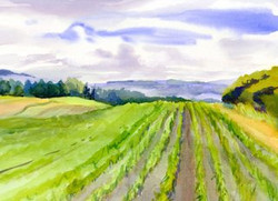 Fields and Meadows  Cards Skyline Road Clinton