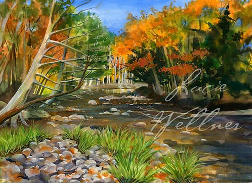 Original Painting | Adirondacks | Boquet River, Fall