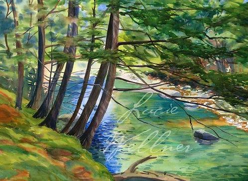 Original Painting | Adirondacks | Boquet River, Summer