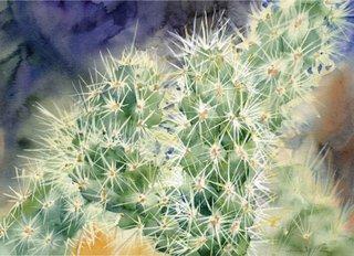 Cactus Cards Claret Cup
