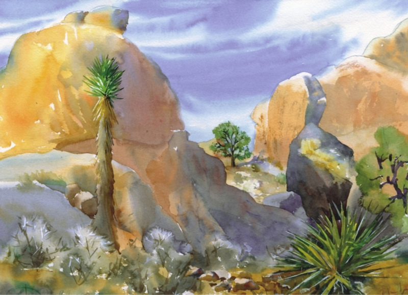 Joshua Tree Cards Rock Shadows