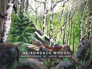 Adirondack Woods