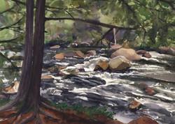 Adirondack Water Cards Near Moss Cliff