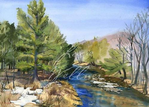 Original Painting | Adirondacks | Boquet River, Spring