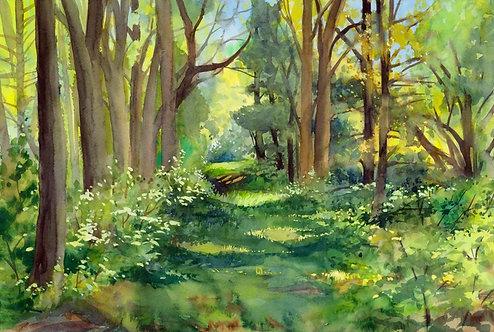 Original Painting | Pompey Woodlands