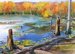 CNY Water Tracy Lake