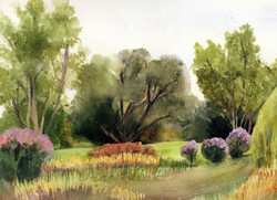 Woodlands Cards Barry Park