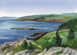 Acadia Cards Otter Point