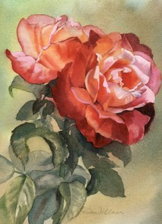 Watercolors of Flowers Cards Jeanette's Rose