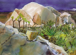 Joshua Tree Cards View of Distant Mountain