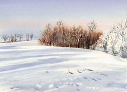 Winter Cards Way Road