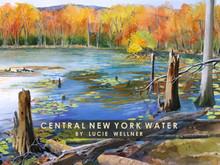 CNY Water Folio Cover