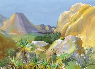 Joshua Tree Cards Echo Cove