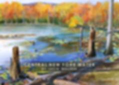 CNY Water Folio Cover.jpg