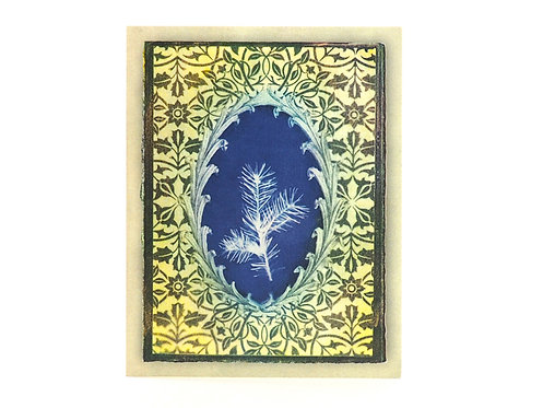 Evergreen Jacobean