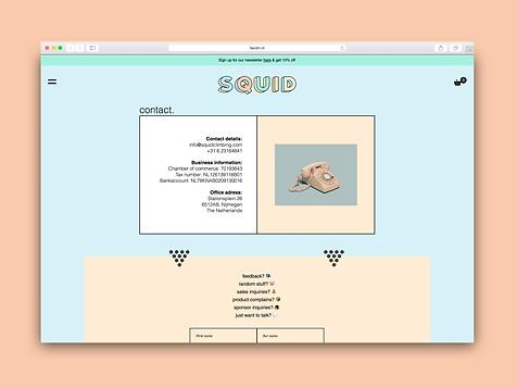 webdevelopment webdesign squid branding project communicatie bureau creatief bureau nijmegen