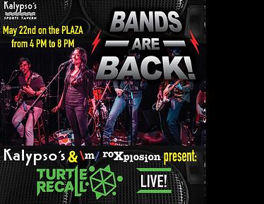 Kalypsos bands are back ad instagram edi