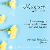 Meiguice