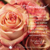 Admiraçao_-_Rosa_Champ.png