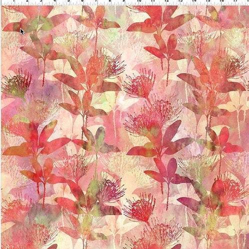 Australian Beauties Flowering Plants (3AUB) by Jason Yenter for In the Beginning
