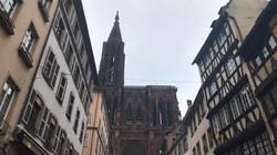 Au pied de la cathédrale Notre-Dame de S