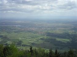Vue panoramique de la plaine d'Alsace