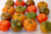 tomato-3357969_960_720.jpg