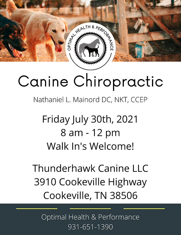 Canine Chiropractic.png