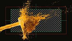 Salty Cactus Creative, Fluid Particle Simulation