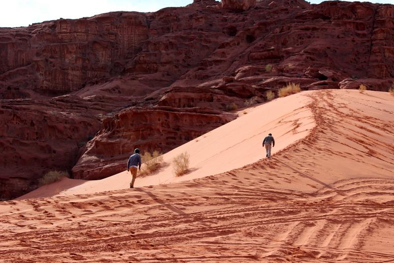 טיולים ברגל במדבר