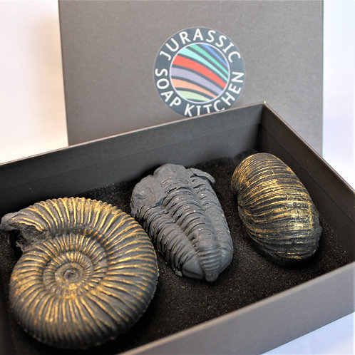 Fossil Collection Charcoal and Peppermint Soap