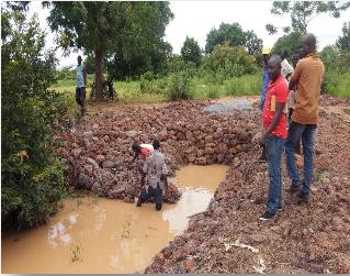 Préservation de la ressource karité & Lutte contre l'érosion des sols : l'expérience d'UGF-C