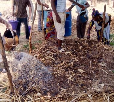 La FENABE accompagne le développement de la Bio au Mali