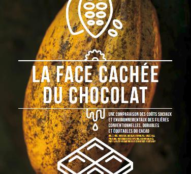 Cacao : Le commerce équitable, un levier puissant pour rendre la filière plus durable